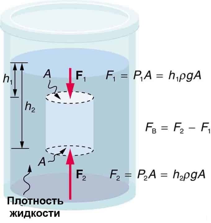 specific gravity by archimedes principle Specific metals metal ores specific gravity values for a few common substances are: archimedes had no immediate answer and pondered this question for sometime.
